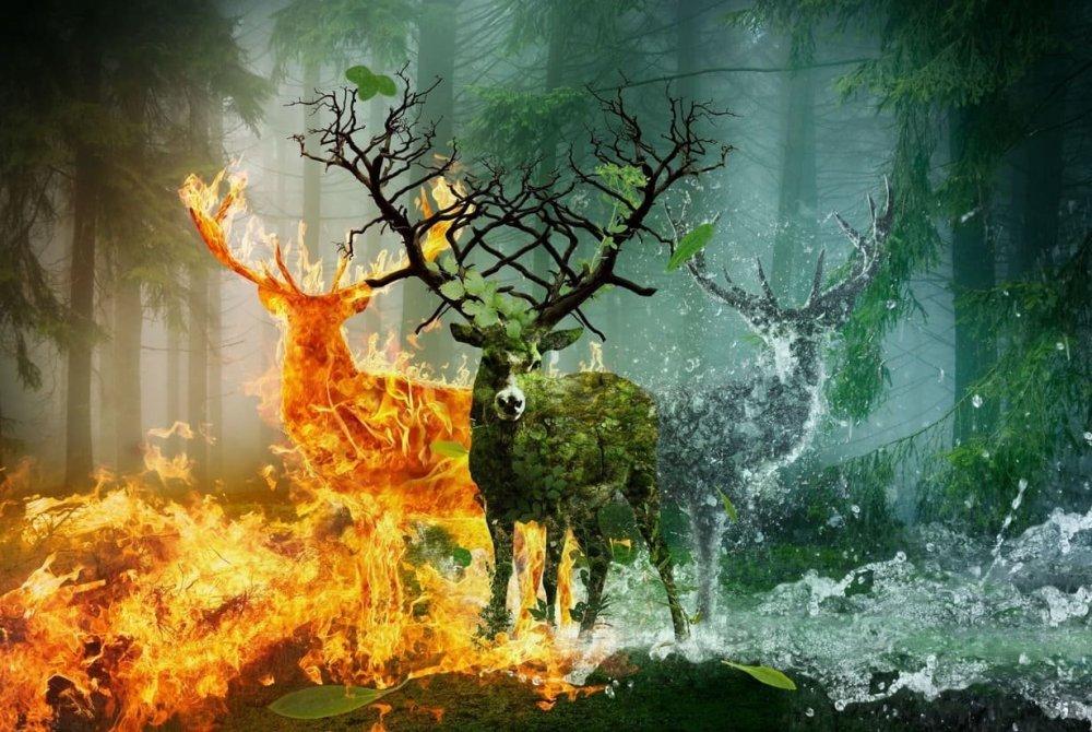 Επιδράσεις πυρός, Γης, αέρα, ύδατος