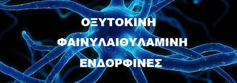 Πως μας επηρεάζουν οι ορμόνες Οξυτοκίνη, Φαινυλαιθυλαμίνη, Ενδορφίνες