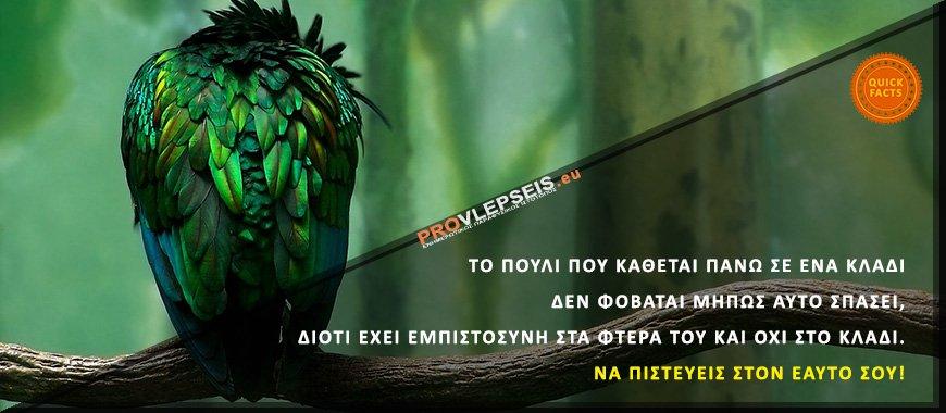 Το πουλί που κάθεται πάνω σε ένα κλαδί δεν φοβάται μήπως αυτό σπάσει, διότι έχει εμπιστοσύνη στα φτερά του και όχι στο κλαδί. Να πιστεύεις στον εαυτό σου!