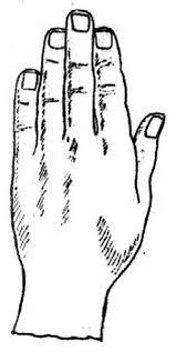 Τα χέρια - Το τετράγωνο χέρι
